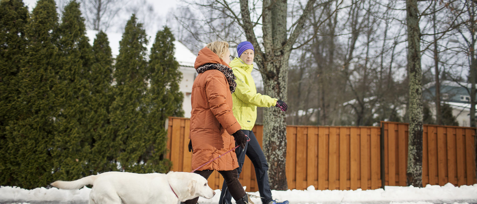 Kuvassa kaksi kävelijää ja koira liukkaalla tiellä.